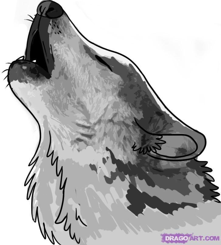 Картинки волк воет на луну для срисовки