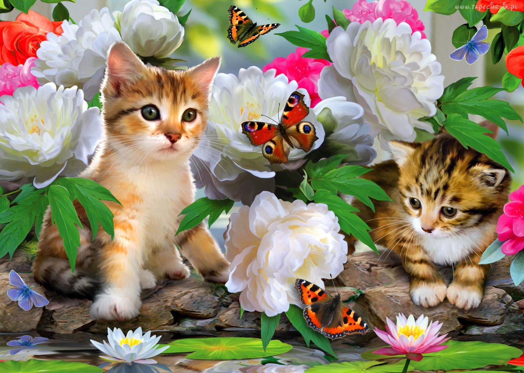 Анимация цветы, открытки с котятами с цветами